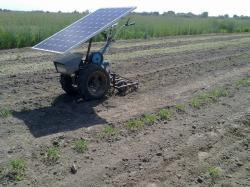 Економно й екологічно: фермер створив мотоблок на сонячній батареї